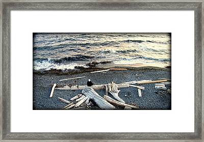Old Woman And The Sea Framed Print by Judy Garrett
