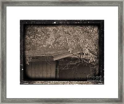 Oldshed Framed Print