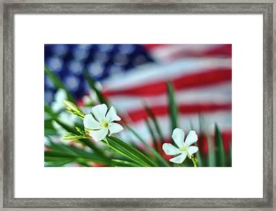 Oleander Flowers Framed Print by Lee Sie Photography
