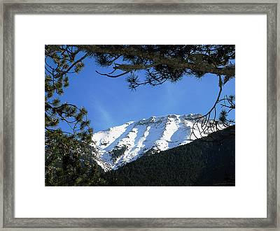 Olympos Through Firs Framed Print by Andonis Katanos