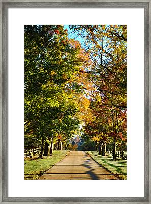 On A Country Road Framed Print by Bill Cannon