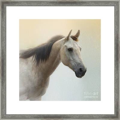 On A Summer Day Framed Print by Betty LaRue
