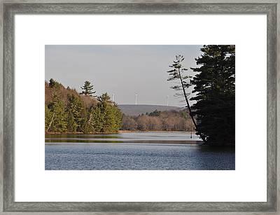 On Bear Creek Lake Framed Print
