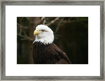 On Call Framed Print
