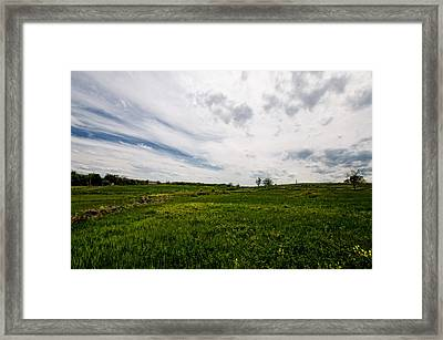 On Fields Of Yellow And Green Framed Print