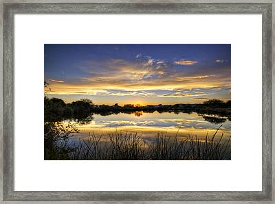 On Golden Shores  Framed Print by Saija  Lehtonen