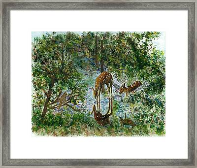 On Looker Framed Print