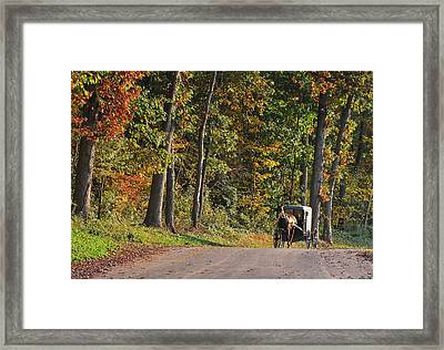 On Our Way Framed Print by Kimberly Little