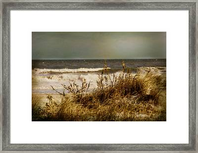 Framed Print featuring the photograph On The Beach by Mary Timman