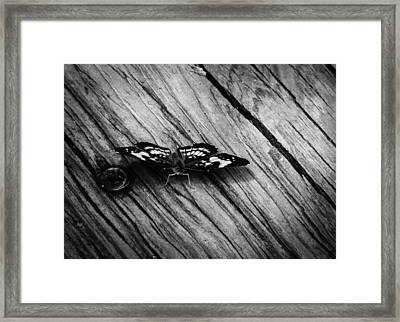 On The Boardwalk II Framed Print by Stacy Michelle Smith