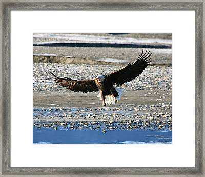Framed Print featuring the digital art On The Edge Of Glory by Carrie OBrien Sibley