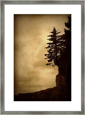 On The Edge Of The Bluff Framed Print by Marilyn Wilson