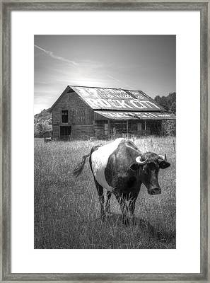 On The Move Framed Print by David Troxel