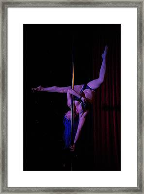 On The Pole Framed Print by Lee Stickels