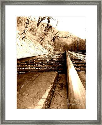 Framed Print featuring the photograph On The Rail by Amy Sorrell