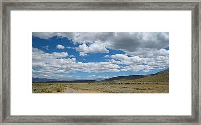 On The Range Framed Print by Kirk Williams