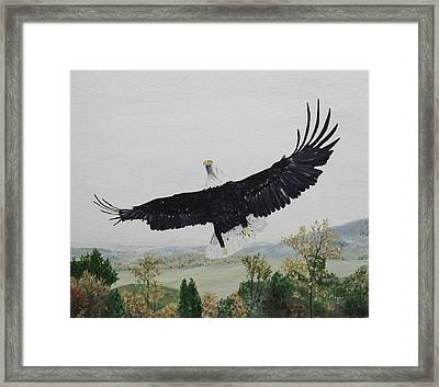On The Rise Framed Print