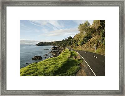 On The Road Around The Coromandel Framed Print by Dawn Kish