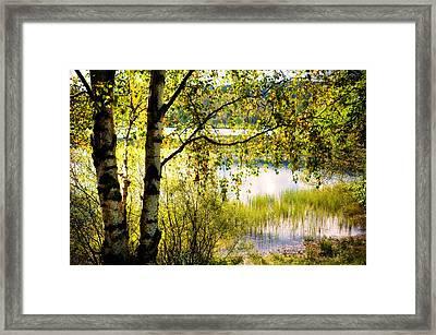 On The Shore Of The Loch Achray. Scotland Framed Print by Jenny Rainbow