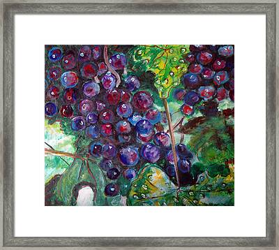 On The Vine Framed Print by Kat Richey