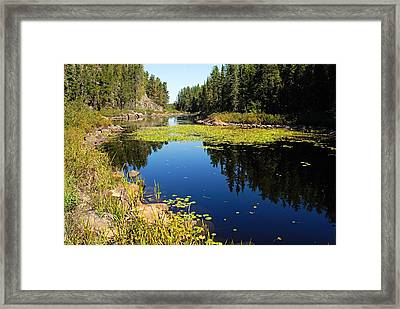 On The Way To East Lunch Lake Framed Print by Larry Ricker