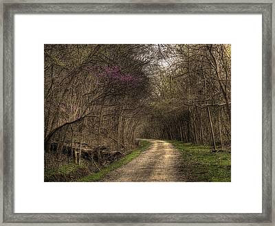 On This Trail Framed Print by William Fields
