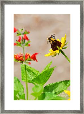 Framed Print featuring the photograph On Top Of The World by Cheryl McClure