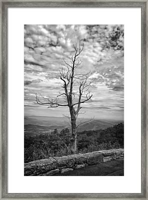 On Top Of The World Framed Print by Guy Whiteley
