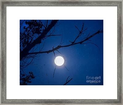 Once In A Blue Moon Framed Print by Rhonda Strickland