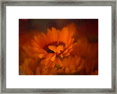 Once Radiant Framed Print