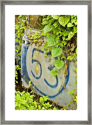 Once Upon A Time Framed Print by Carolyn Marshall