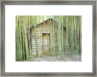 One Room House With Bamboo Framed Print