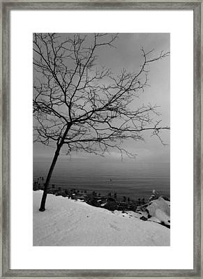 Framed Print featuring the photograph One Tree Lake by Luis Esteves