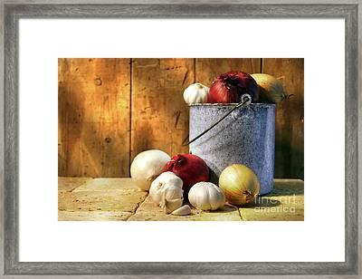 Onion Harvest Framed Print by Sandra Cunningham