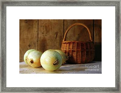 Onions On The Counter Framed Print