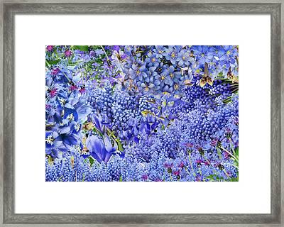 Only Blue Flowers Framed Print