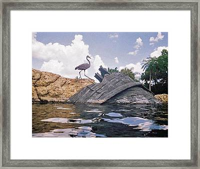 Only Memories Framed Print by Elisia Cosentino