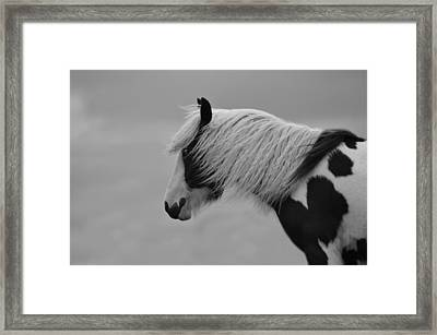 Only The Wind Spoke Of Softness Framed Print