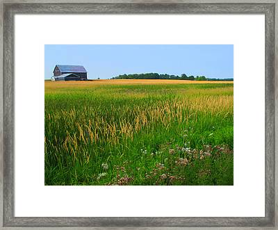 Ontario Farm  Framed Print by Lyle Crump