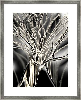 Onyx Growth The Begining Framed Print