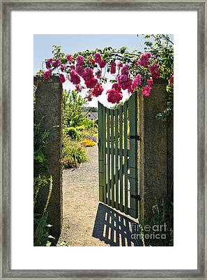 Open Garden Gate With Roses Framed Print