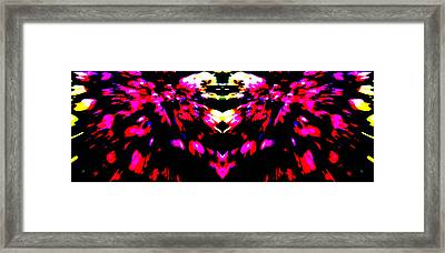 Opening Out Framed Print by Danny Lally