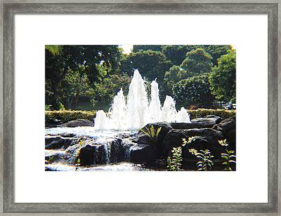 Opening Framed Print by Raquel Amaral