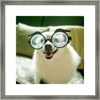 Opia Dog Framed Print by Image provided by Chang, Min-Chieh