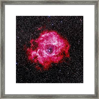 Optical Image Of The Rosette Nebula Ngc 2237-2239 Framed Print by Celestial Image Co.