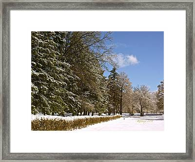Optimistic Peace Framed Print by Rotaunja