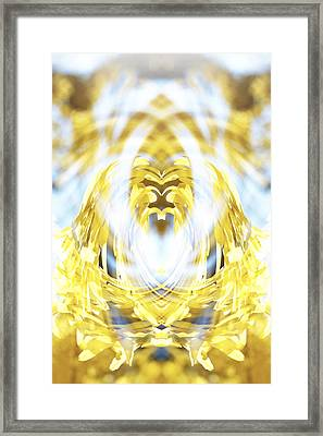 Oracle Framed Print by Anthony Rego