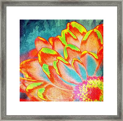 Orange And Yellow Petals Of Color Framed Print by Cathie Tyler