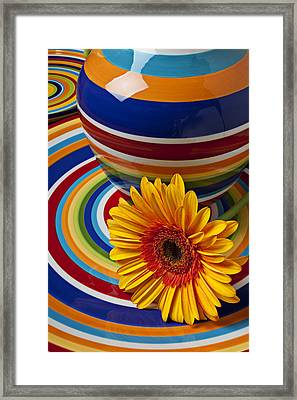 Orange Daisy With Plate And Vase Framed Print by Garry Gay