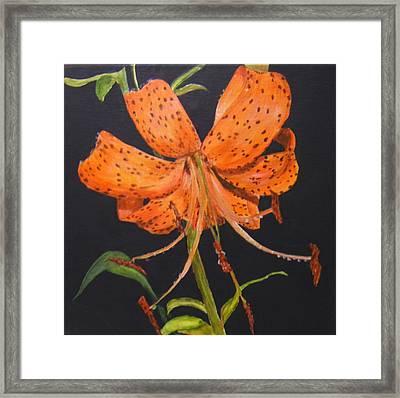 Orange Day Lilies Framed Print